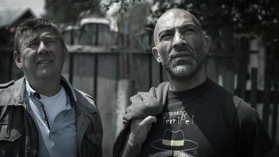 Ciprian staat nu aan het hoofd van een regeringscomité voor Romakwesties.