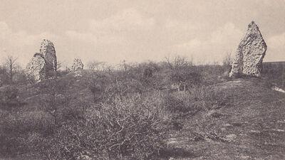 Ruïnes van het kasteel van Hesdin (oude postkaart)