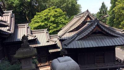 Zicht op het dakenspel van de Japanse trappengalerij
