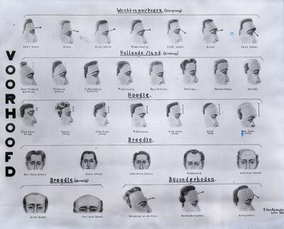 Tekeningen van voorhoofden als hulpmiddel bij een identificatie