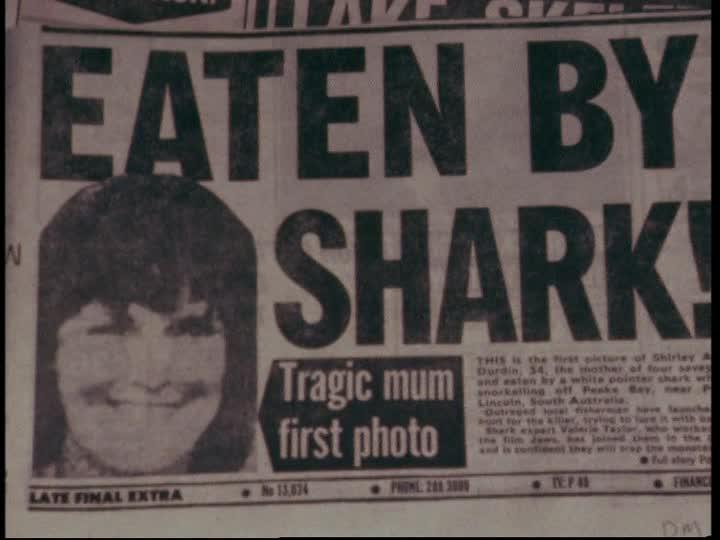 Haaien kunnen elk moment opduiken, overal. Op uw voorpagina, aan uw vakantiezeetje, in uw visriviertje. Overal.