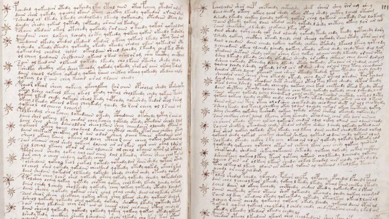Voynich Manuscript: tekstpagina's