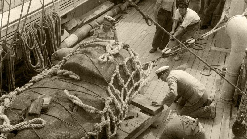 Het godenbeeld van de tonijnvissers wordt vastgelegd op het dek van de Mercator.
