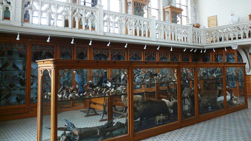 Museumzaal