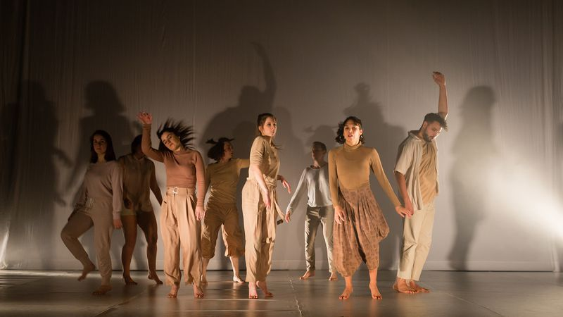 Dansschool Dance-Control in 'Vleeshoop'