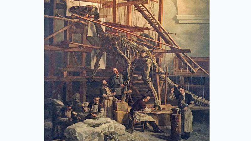 Opbouw van het geraamte van een iguanodon in Brussel (1882)