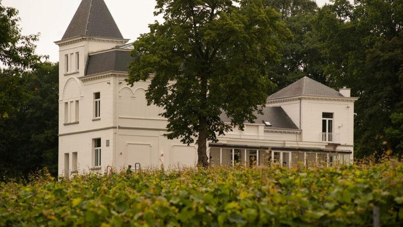 Het wijnkasteel Haksberg tussen de wijngaarden