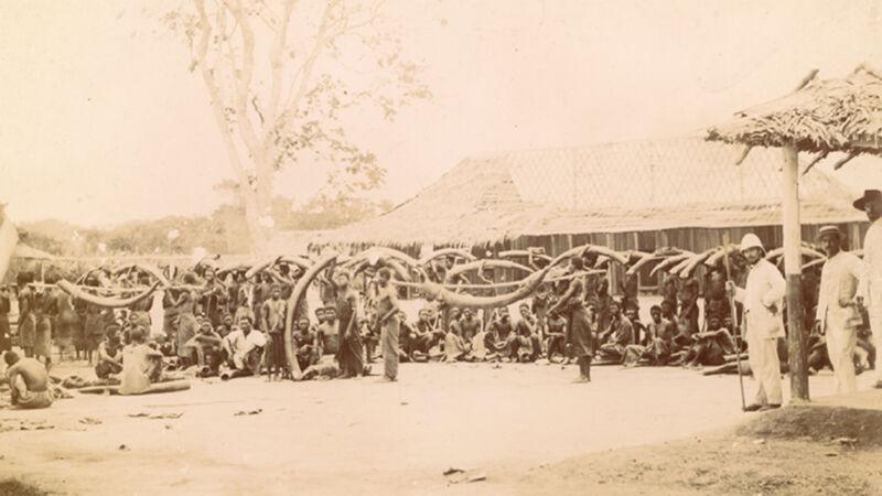 Ivoorhandel in Congo-Vrijstaat, foto uit 1892