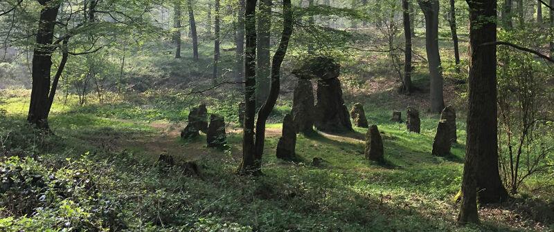 Het monument in het Zoniënwoud