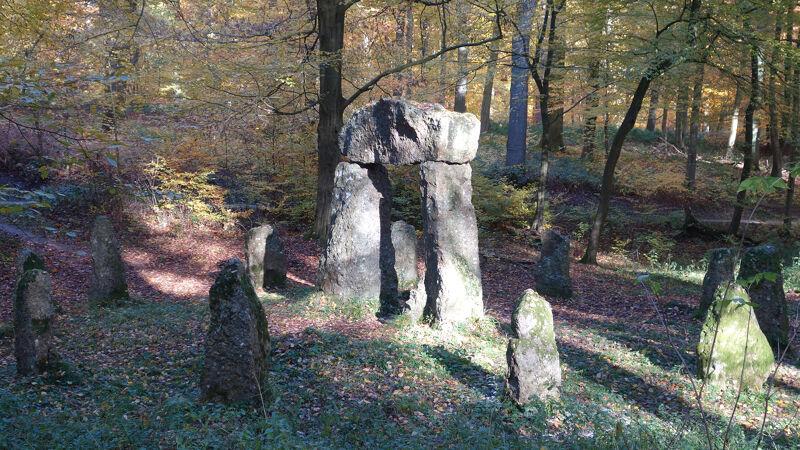 Megalieten in het Zoniënwoud