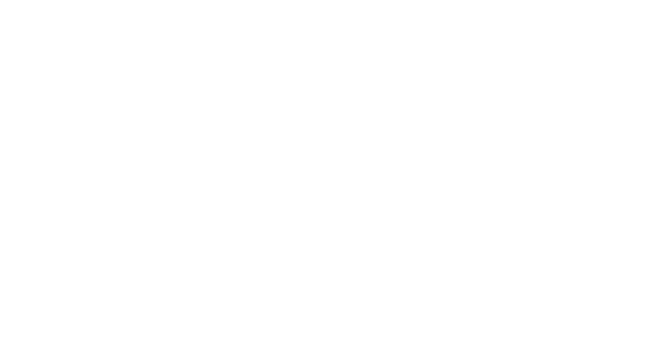 LeFtO - In transit