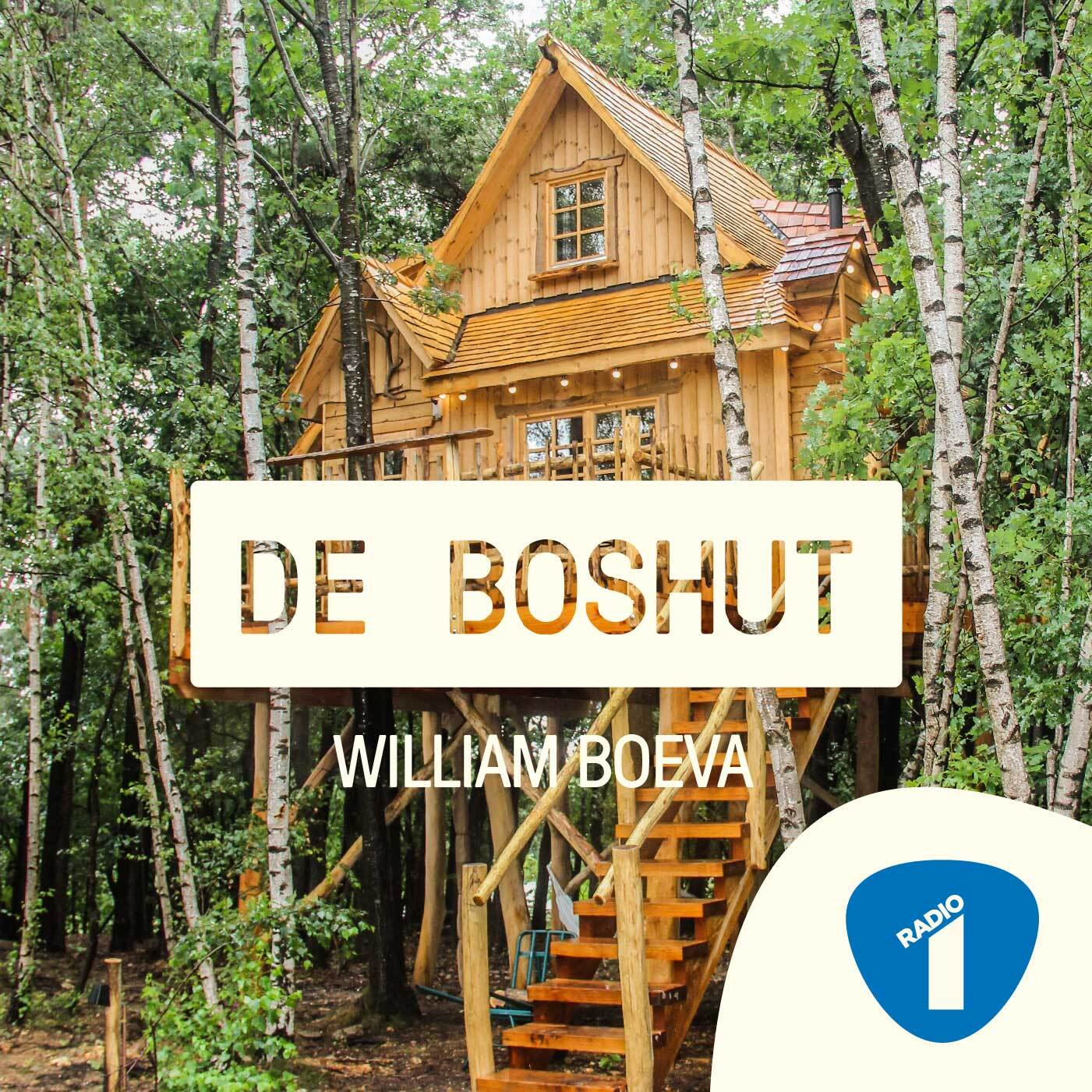 De Boshut - William Boeva