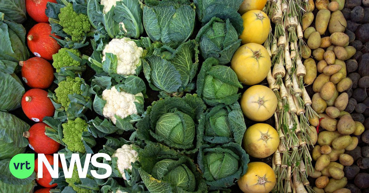 NMBS start afhaaldienst voor lokaal geteelde verse groenten en fruit