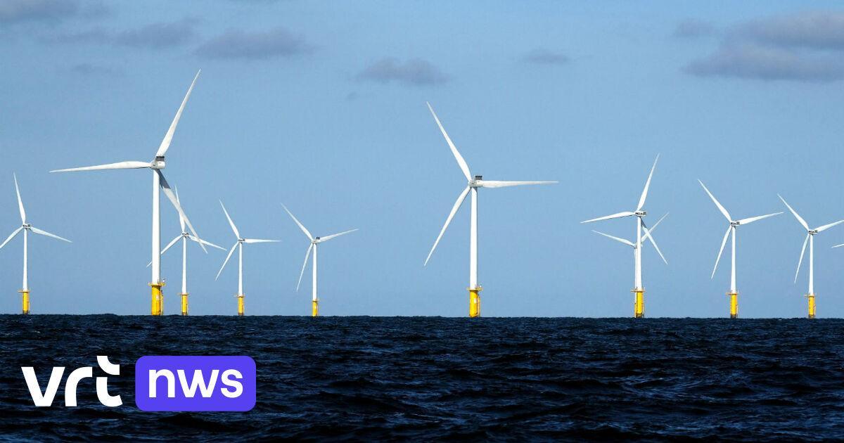 Grootste groene-waterstoffabriek van Benelux komt in Oostende