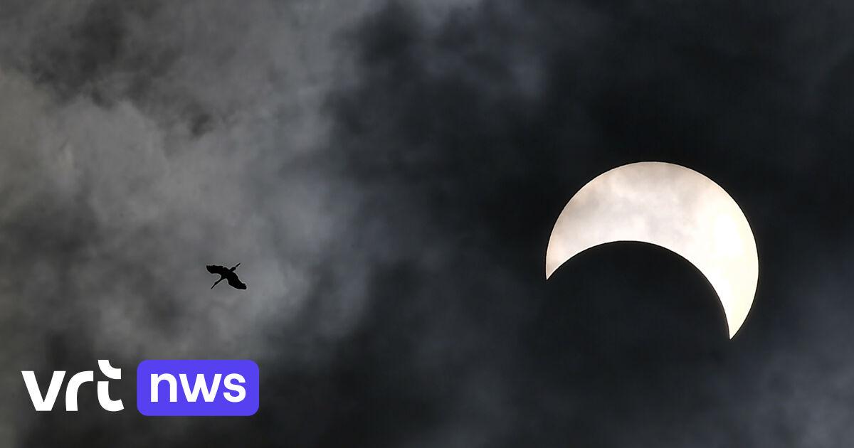 Gedeeltelijke zonsverduistering op 10 juni in ons land, volkssterrenwachten bieden lespakketten en eclipsbrilletjes aan