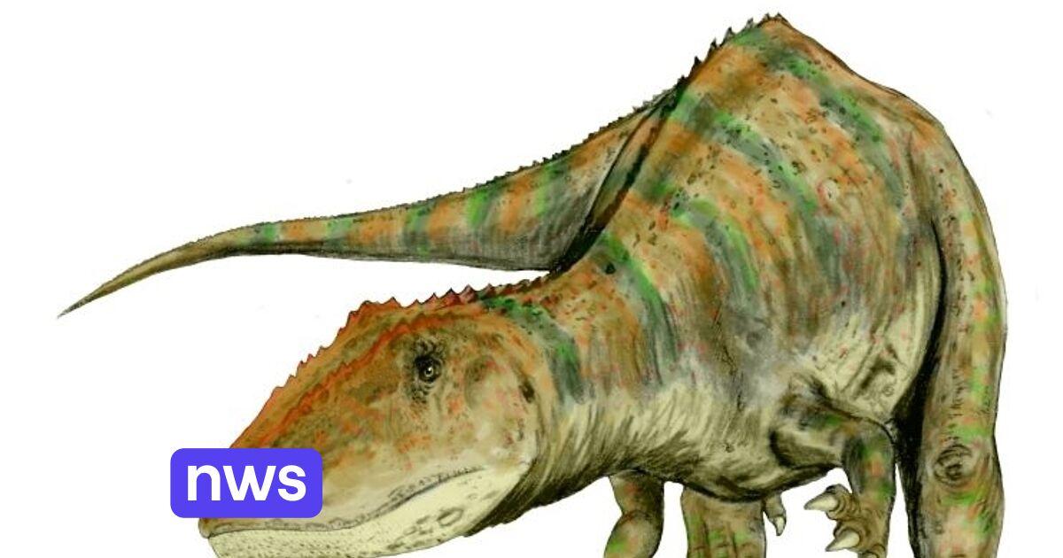 Grote vleesetende dino's hadden verschillende groeistrategieën om hun gigantische omvang te bereiken