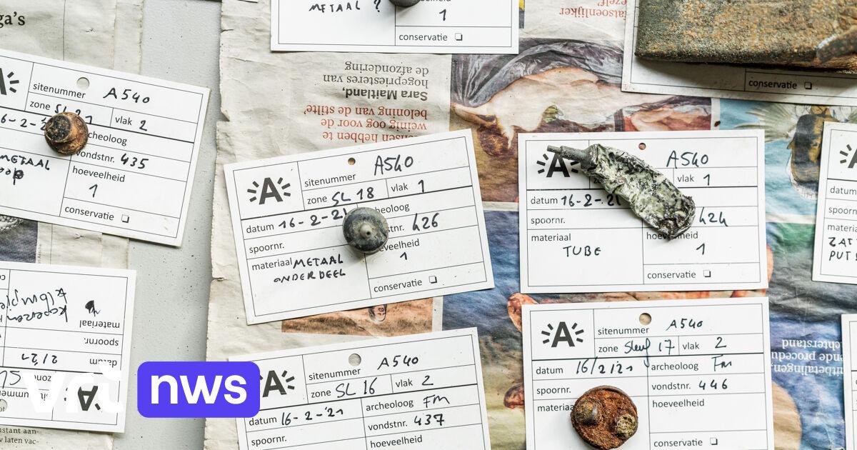 WW2 treasure trove in Antwerp wood