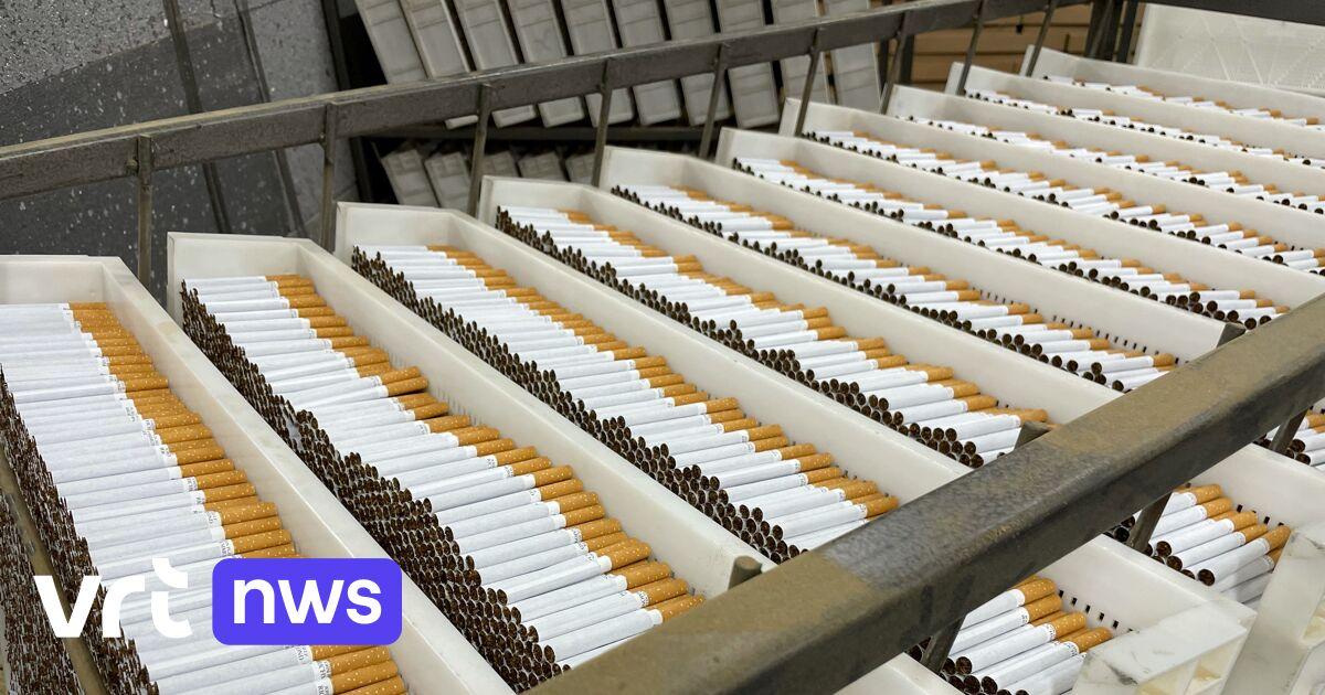 Grootste douaneactie tegen illegale sigaretten in ons land: «Productiesites schieten als paddenstoelen uit de grond»