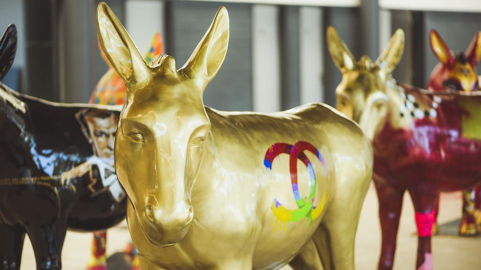 Painted donkeys to take up residence in Flemish towns