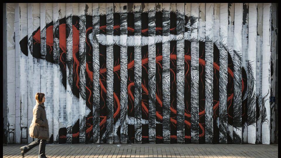 ROA CODEX groups 20 years of the Flemish street artist's work